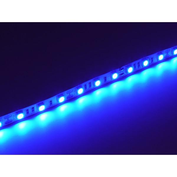 Banda LED SMD5050 60 LED IP20 Albastru