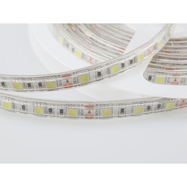 Banda LED SMD5050 60 LED IP65 Alb Rece