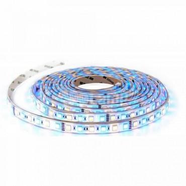 Banda LED de interior 10.8W 60 LED 12V RGBW Alb Rece