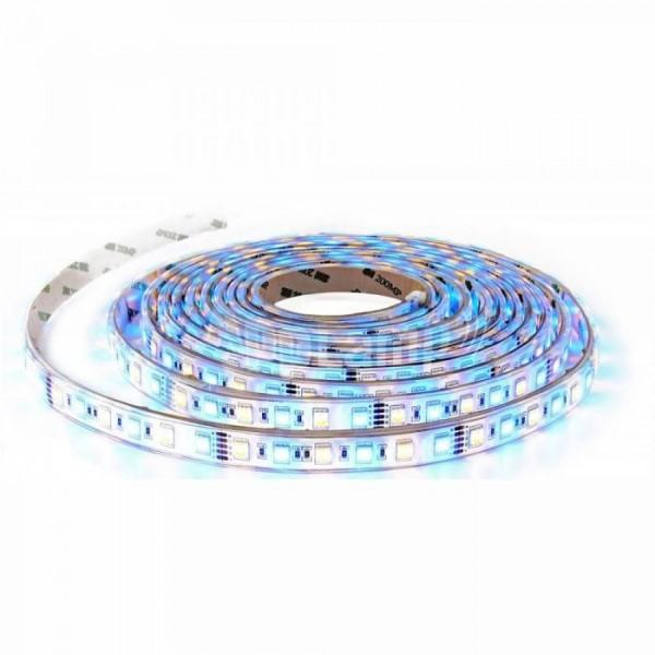 Banda LED de interior 10.8W 60 LED 12V RGBW Alb Cald