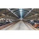 Corp de iluminat etans cu LED 46W LEDVANCE 150cm cu Kit de Emergenta 3h