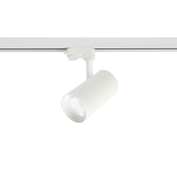 Proiector LED 30W pe sina XGAMMA Alb 38 grade Alb cald UGR<19